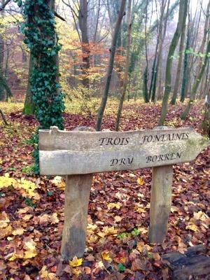 Trois Fontaines Forest de Soignes Brussels